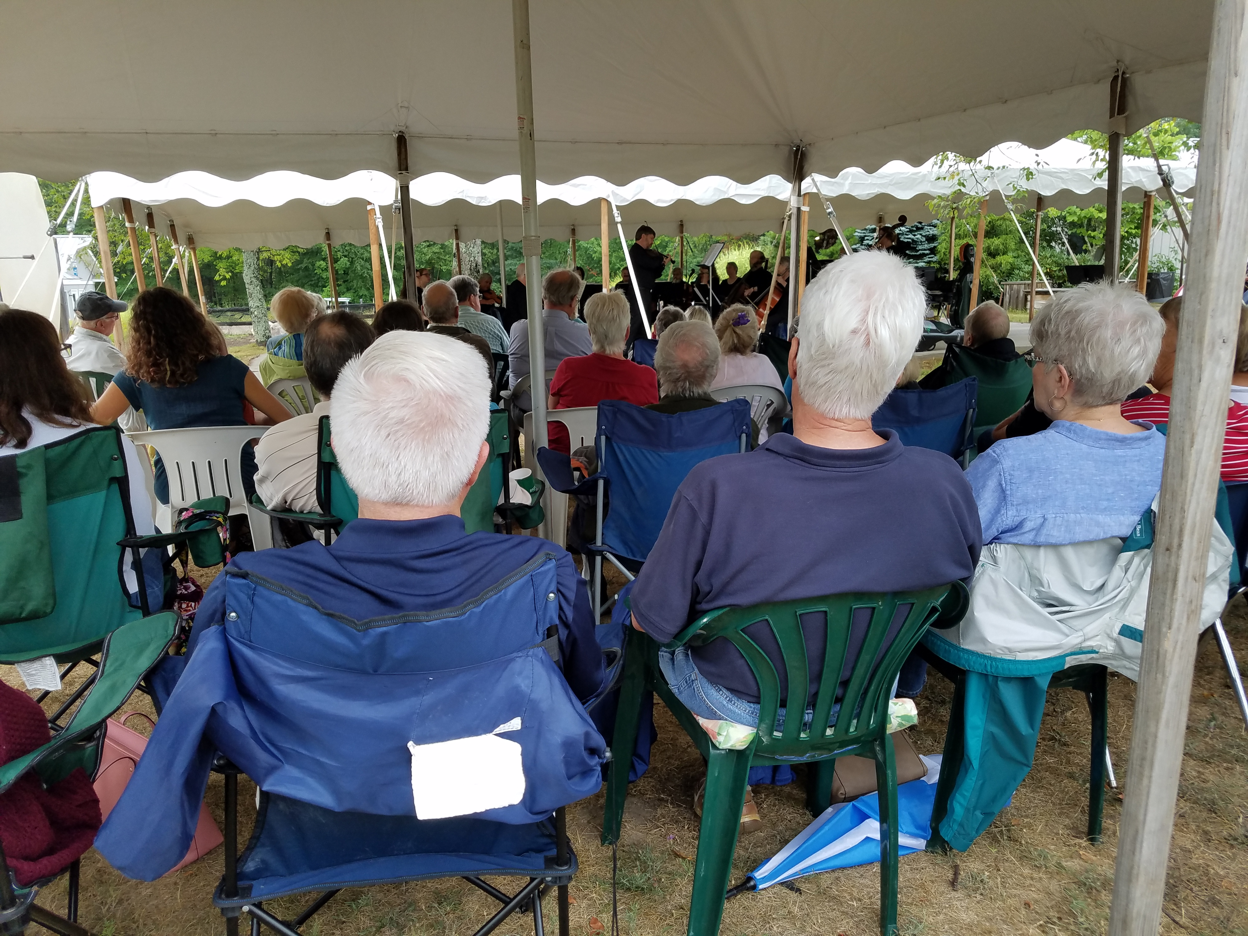 Celestial Music with Great Lakes Chamber Orchestra