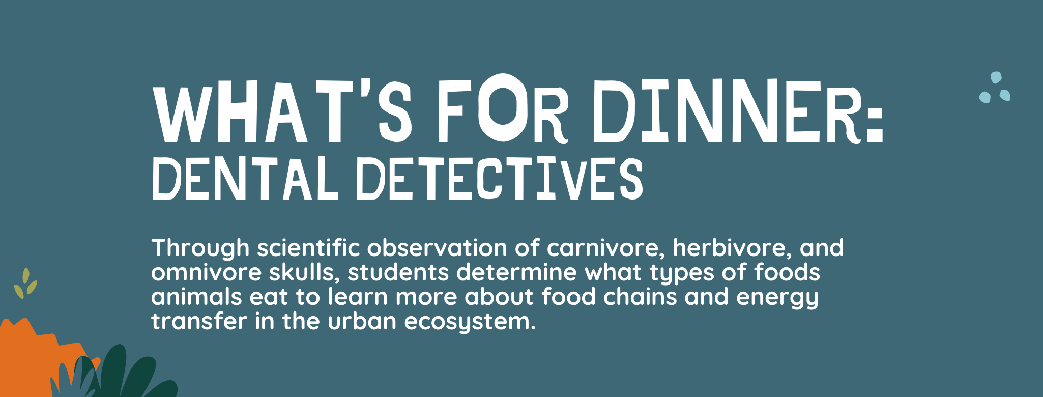What's for Dinner? Dental Detectives