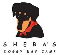 Tail Wagger Sponsor