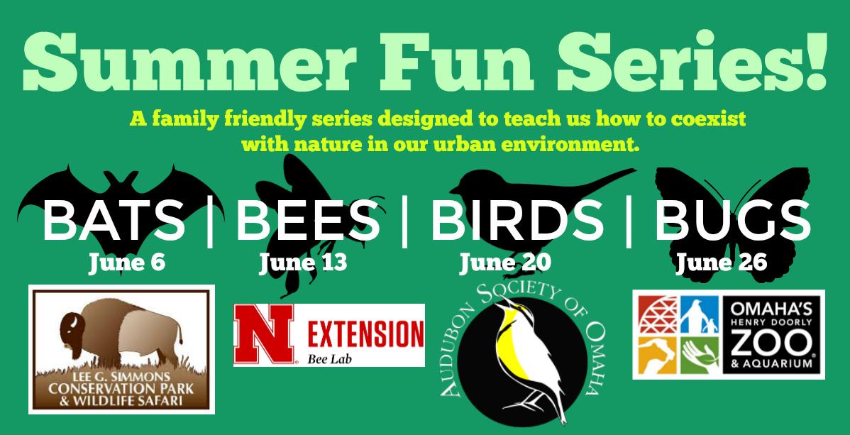 Summer Fun Series: BUGS!