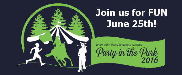 Party in the Park 2016 spotlight with logo