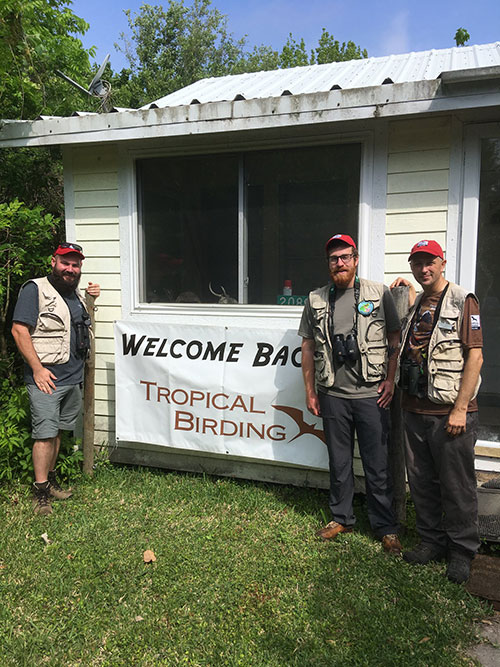 Tropical Birding Guides Are Back