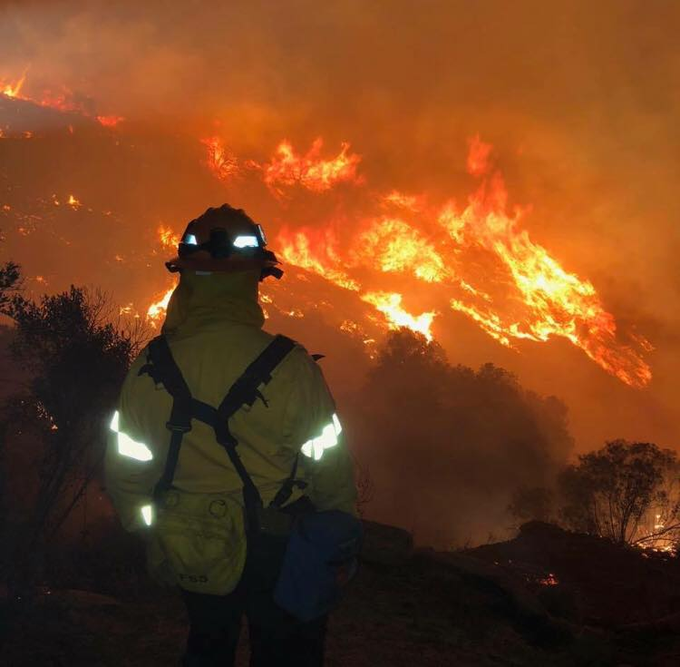 all within my hands news media news support wild fire relief