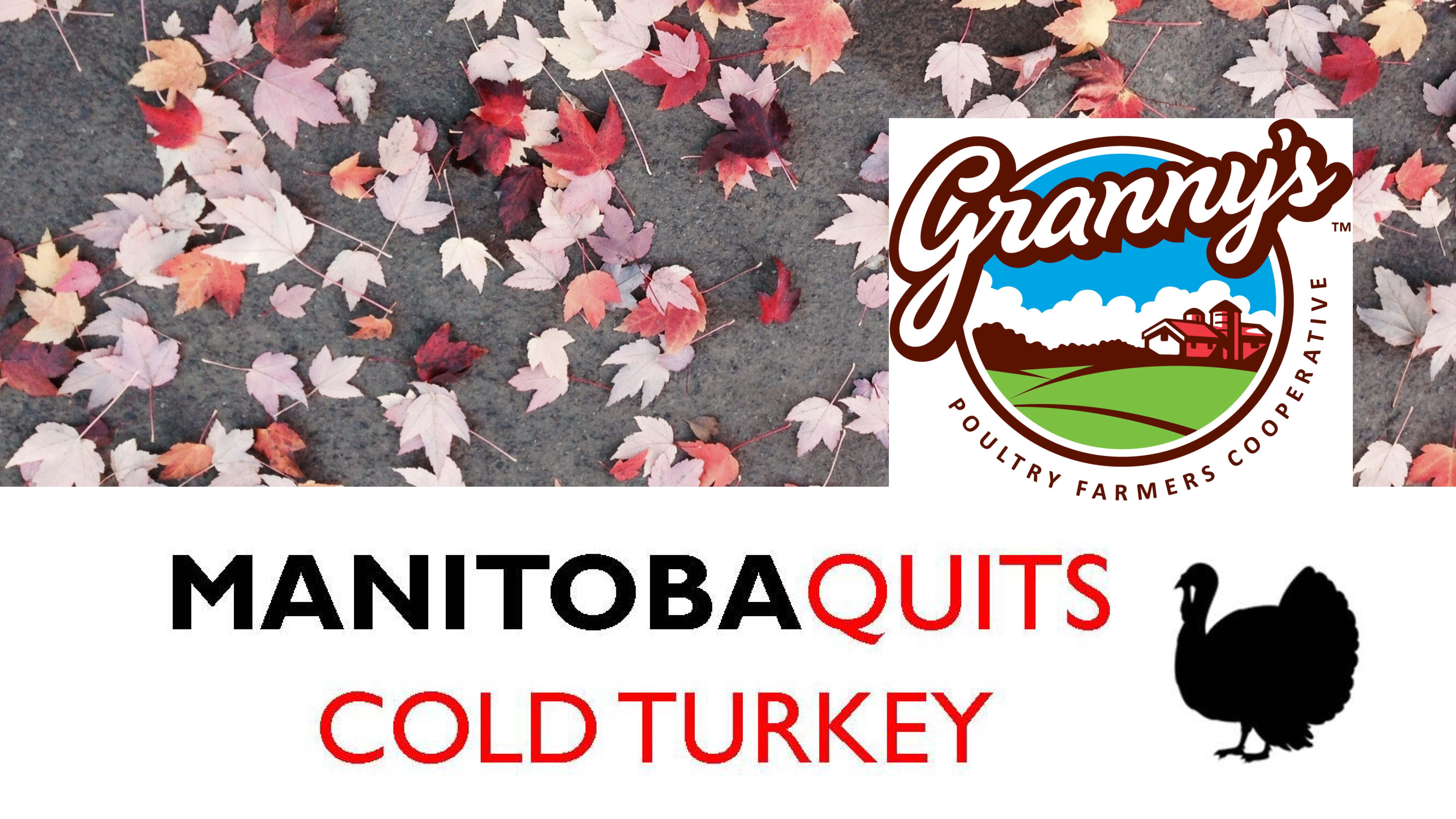 Manitoba Quits Cold Turkey 2018