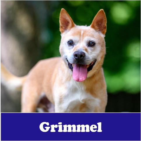 Grimmel