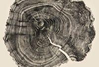 Sarah Rowe: Vertical Disintegration