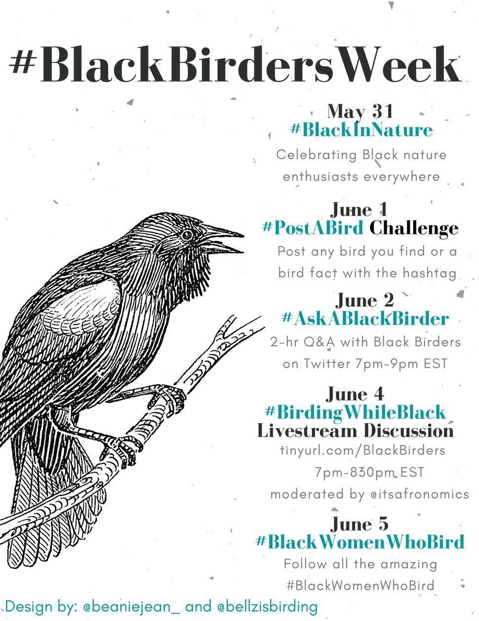 Black Birders Week