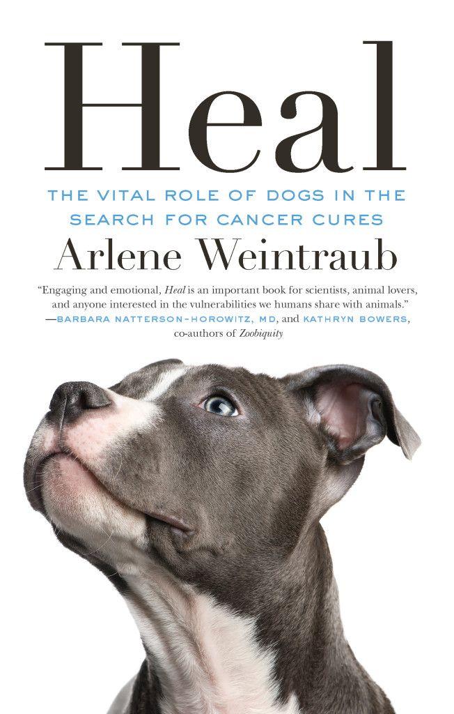 """""""Heal"""" Written by Arlene Weintraub"""