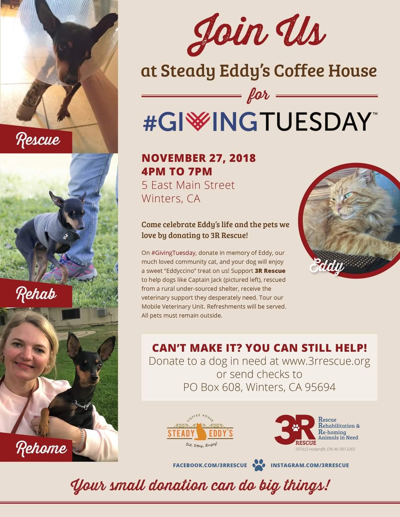 #GivingTuesday Fundraiser