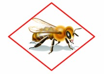 Pollinators and Pesticide Stewardship