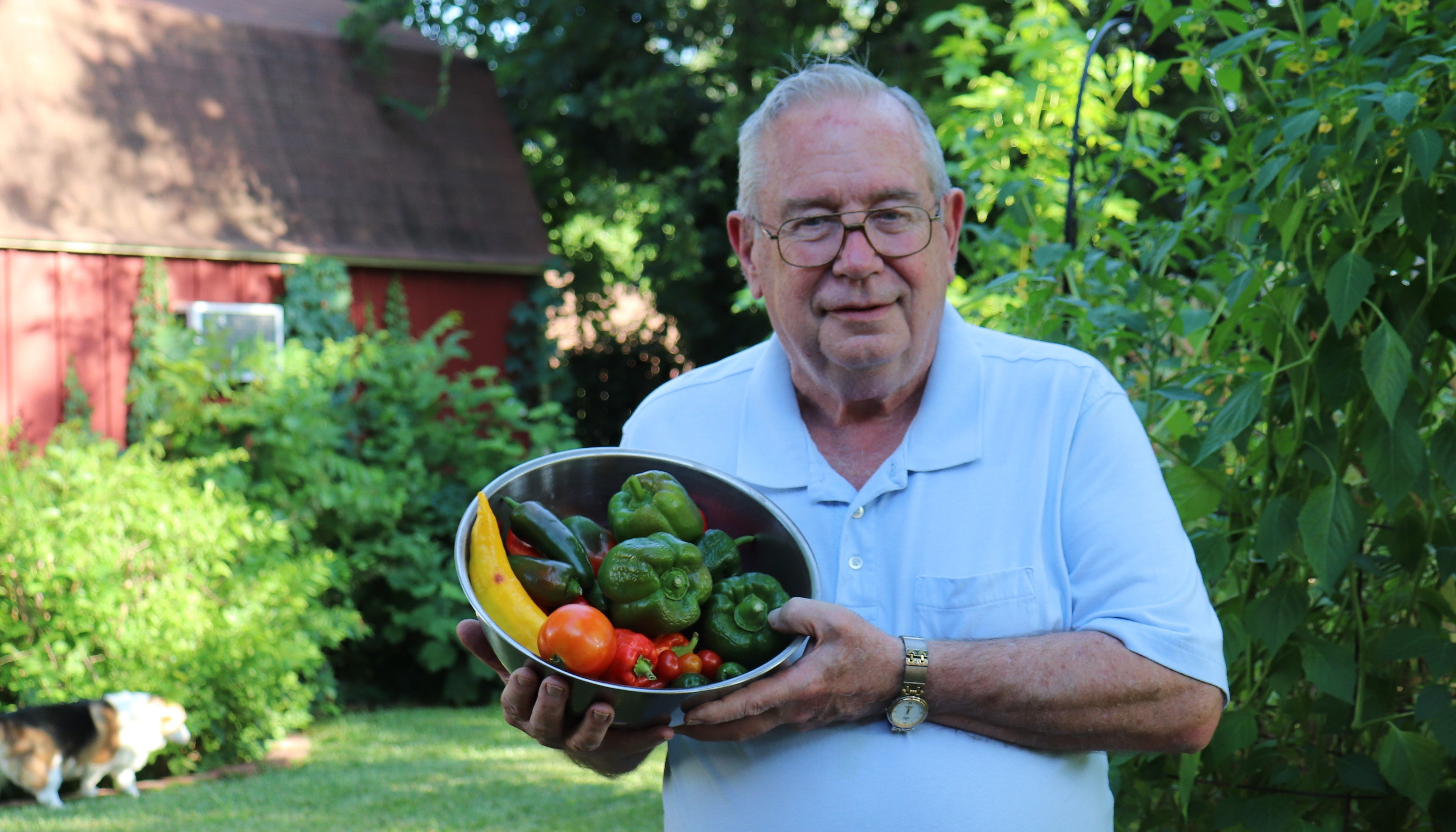 Man with homegrown vegetables