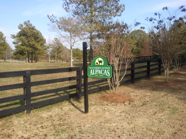 O24404 - Alpaca Sign for a Ranch