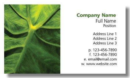 Model #008: Kwik Kopy Design and Print Centre Halifax Business Cards