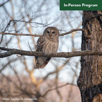 Owl Prowl After Dark Hike – Click Here to Register