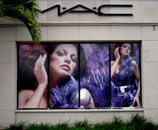Digital Window Display