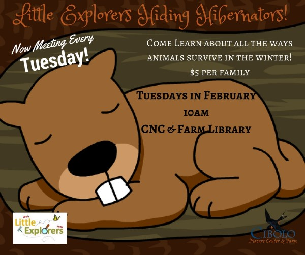 CNC: Little Explorers - Hiding Hibernators!