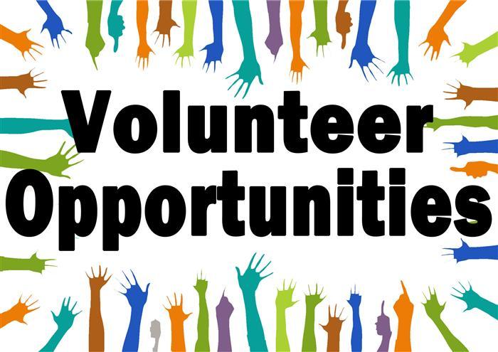 Volunteer this summer!
