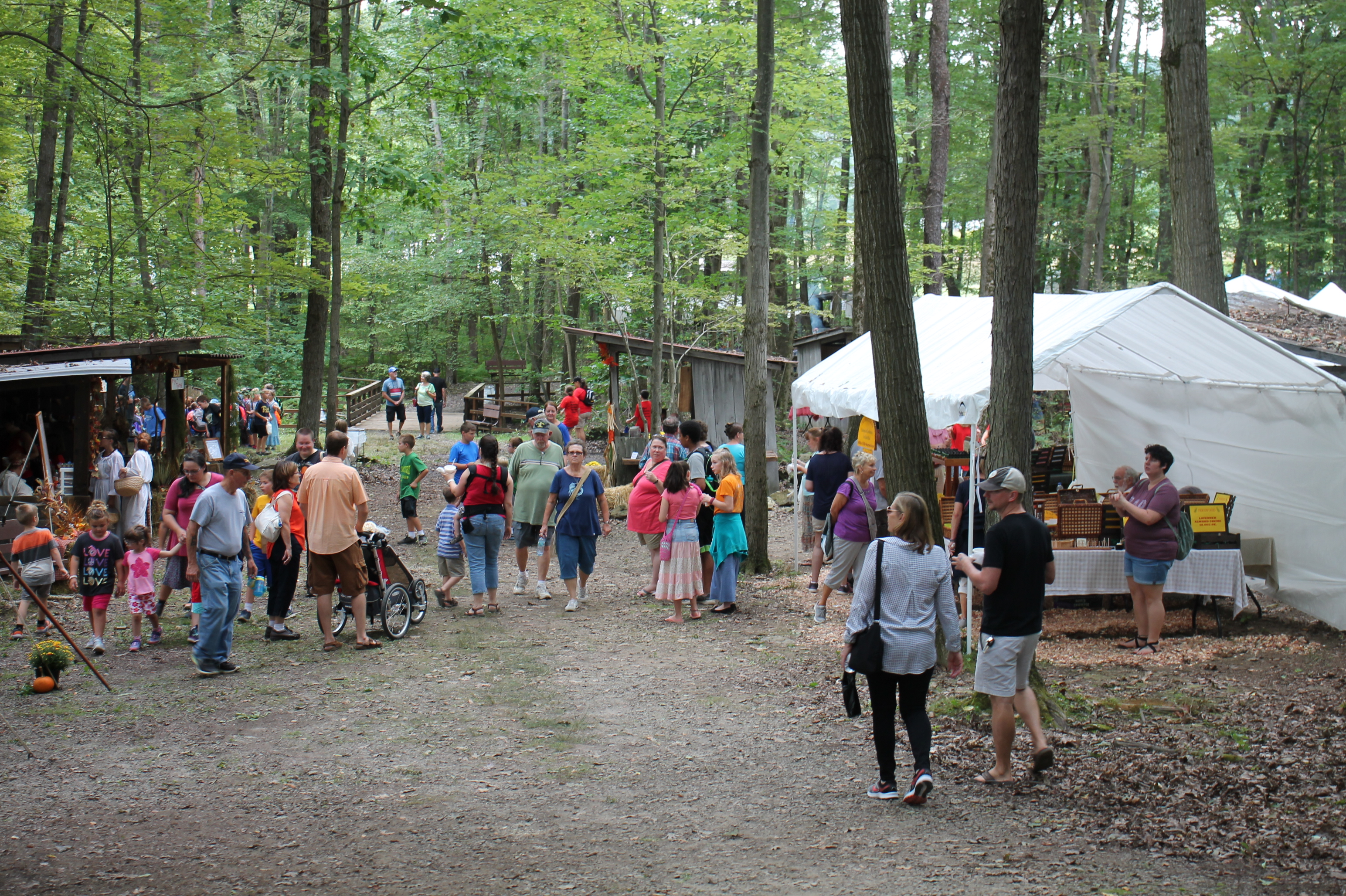 Pictures of a crowd of people walking along a woodland path with tents along the side.