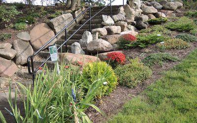 Grotto Gardens Website Update