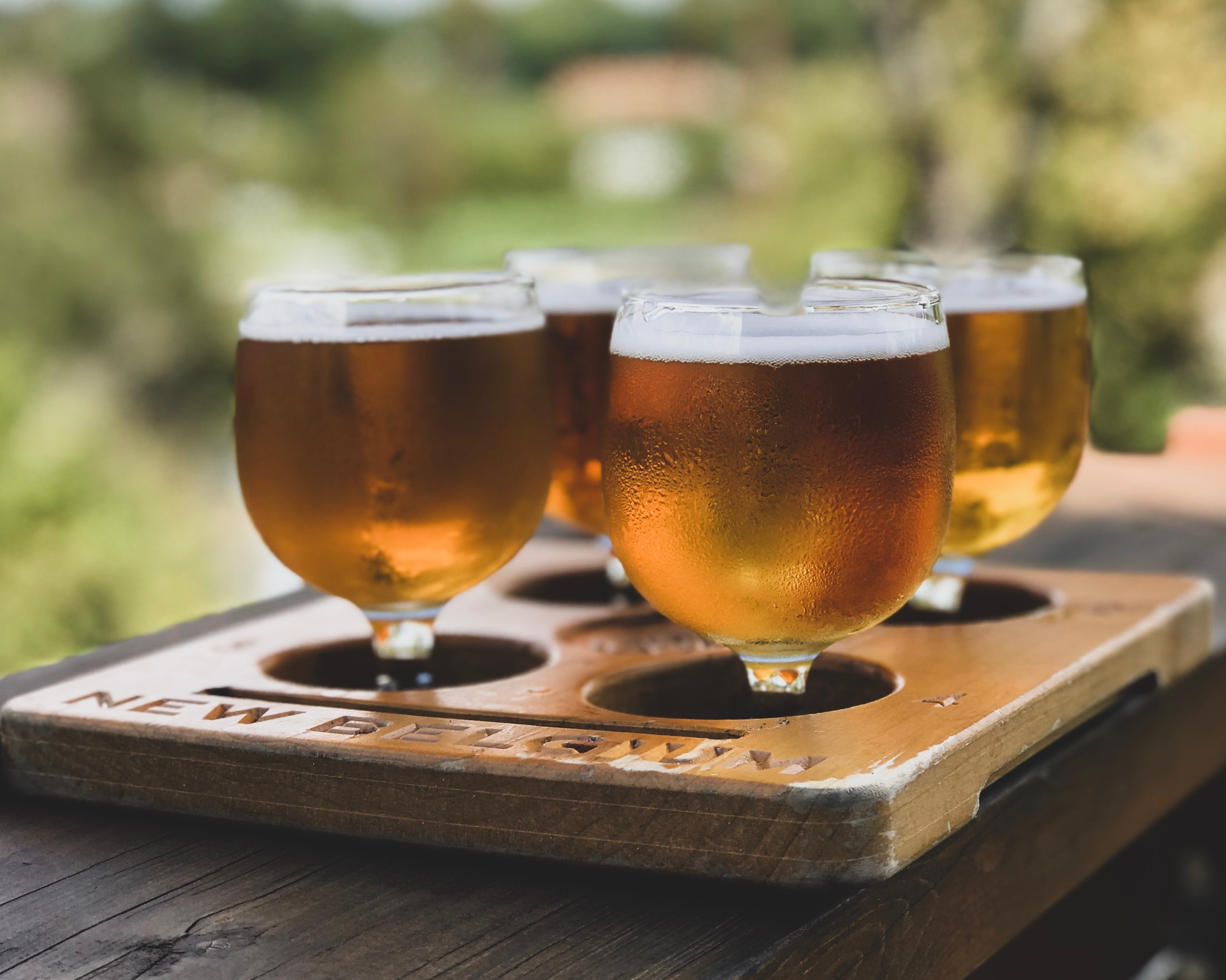 Beer Tasting for Capital Humane Society