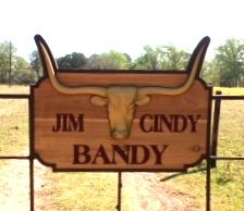 O24122- Cedar Wood 3-D Longhorn Ranch Sign