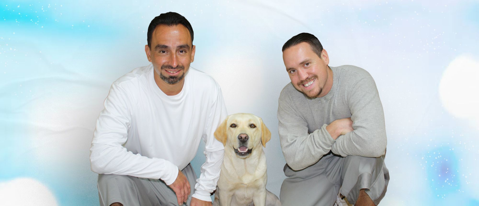 International Assistance Dog Week Fundraiser