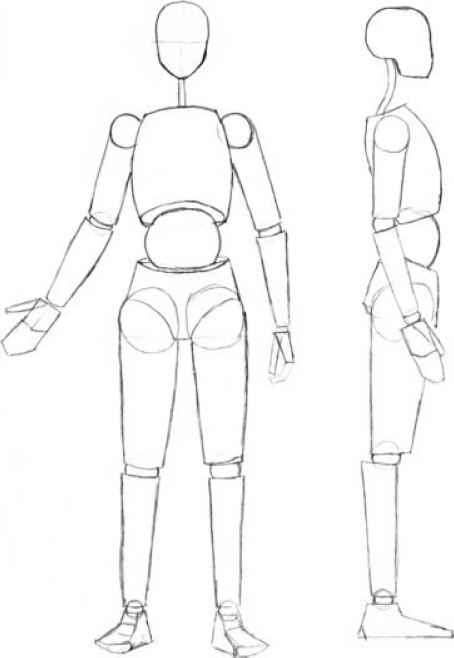 Download Body Outline