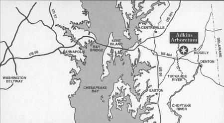 Adkins Arboretum Map