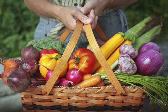 Join Hilltop Hanover Farm's CSA Today