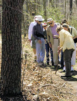 First Saturday Guided Walk