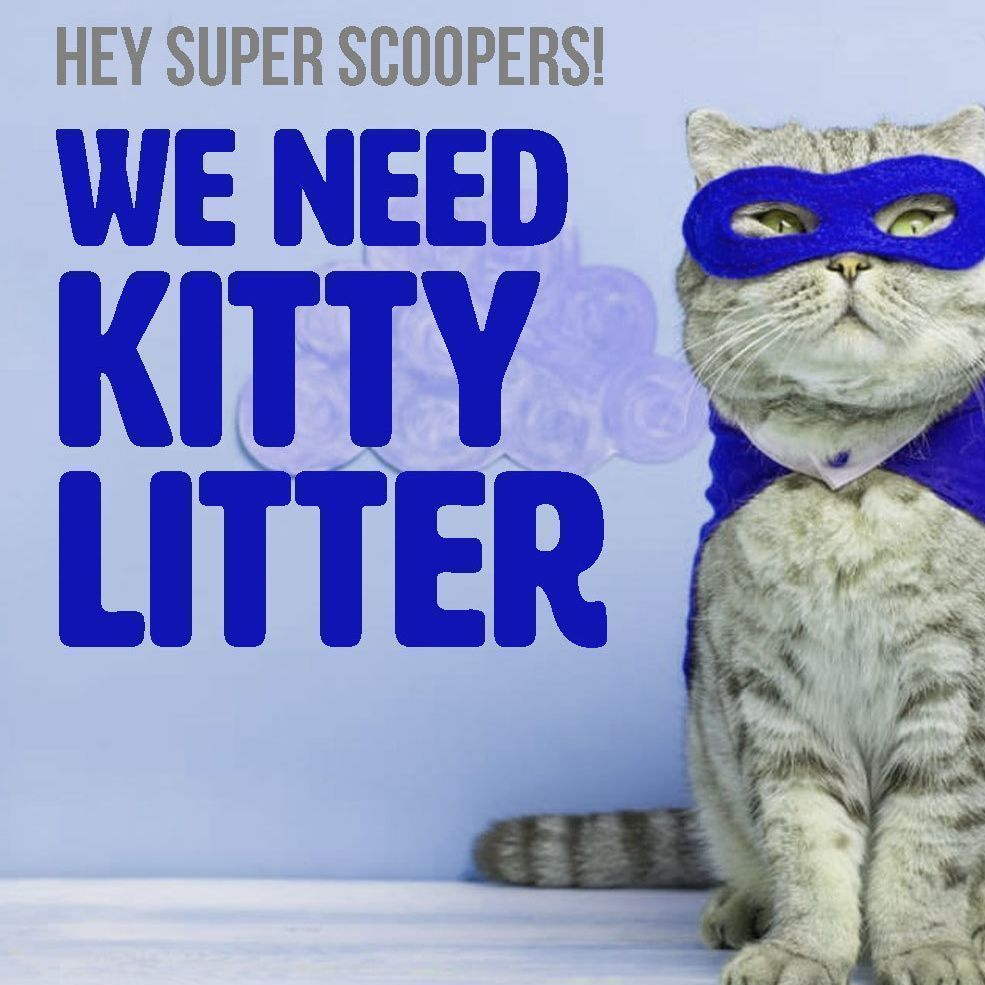 Be a Hero for our Cats and Kittens by Joining This Club