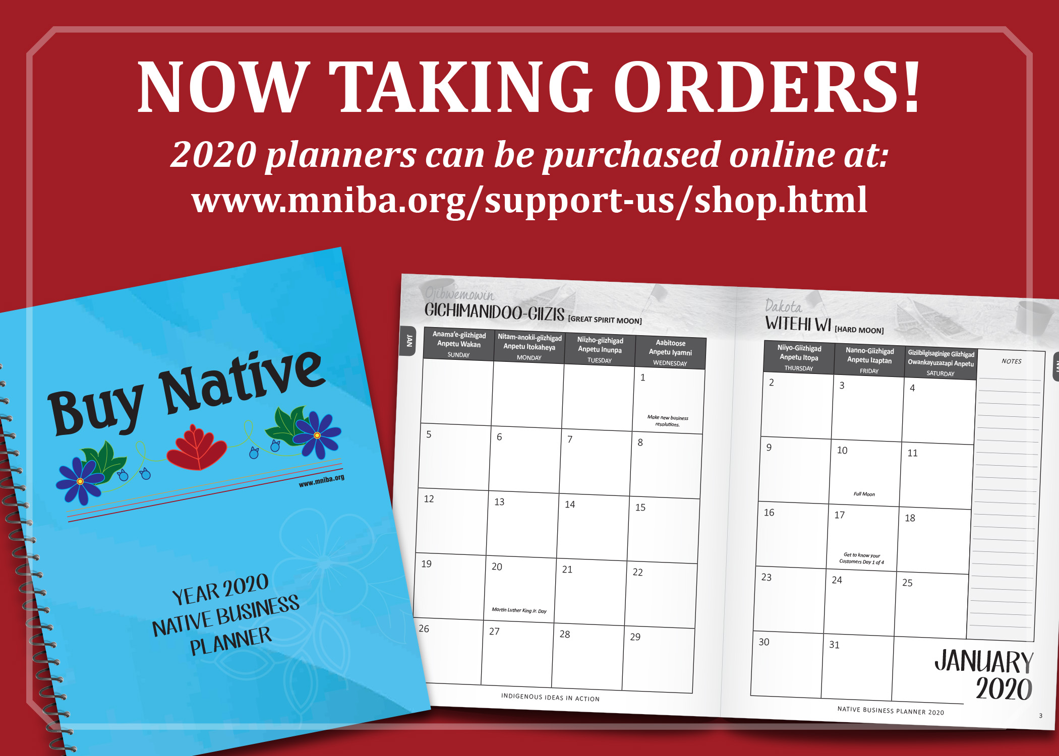 2020 Professional Native Business Planner