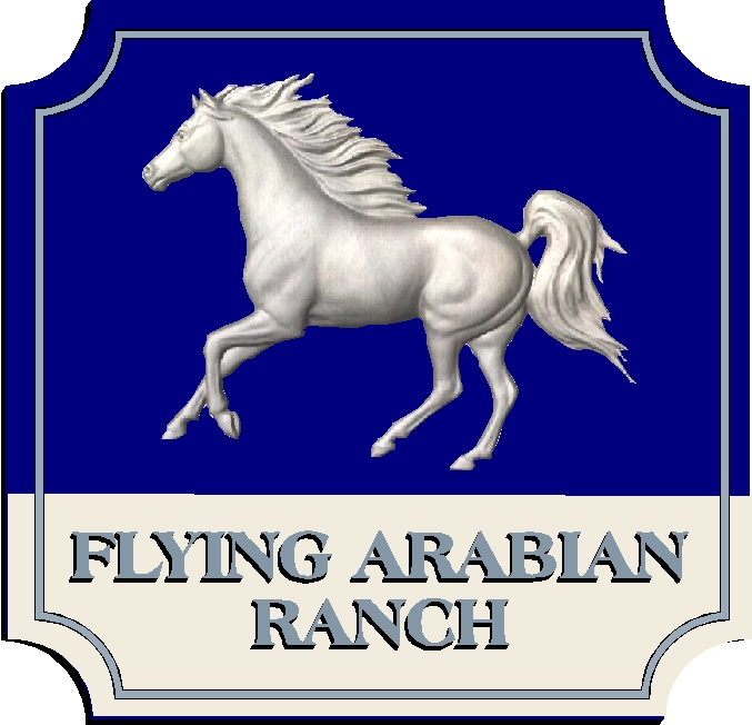 P25020 - 3-D Carved Arabian Horse Sign