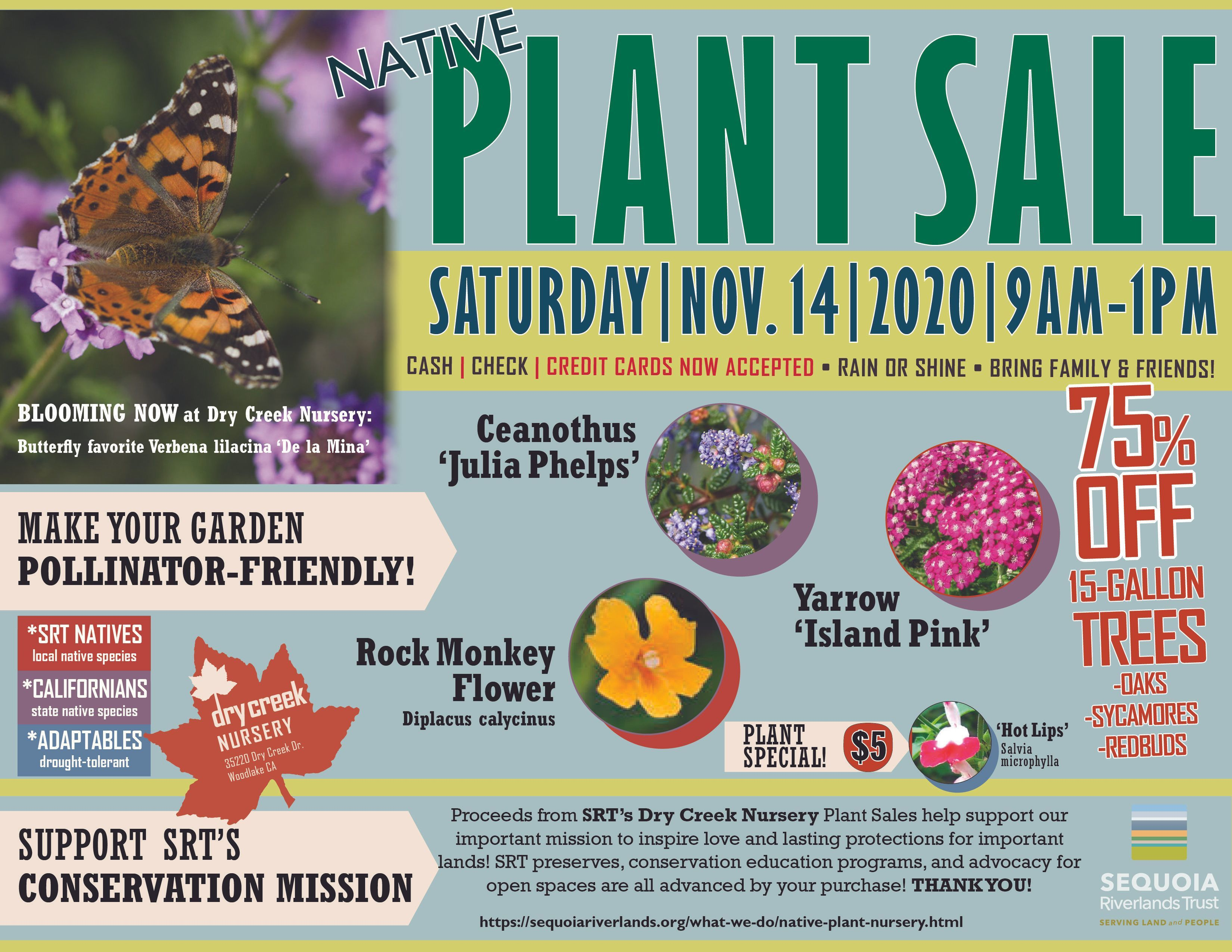 Plant Sale at Dry Creek Nursery