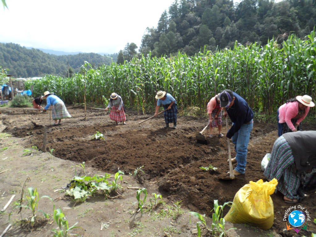 Agriculture is one of the best elements of an economy, why not help it?