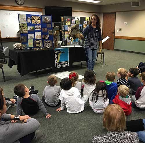 Owls Presentation For Pre-K Children