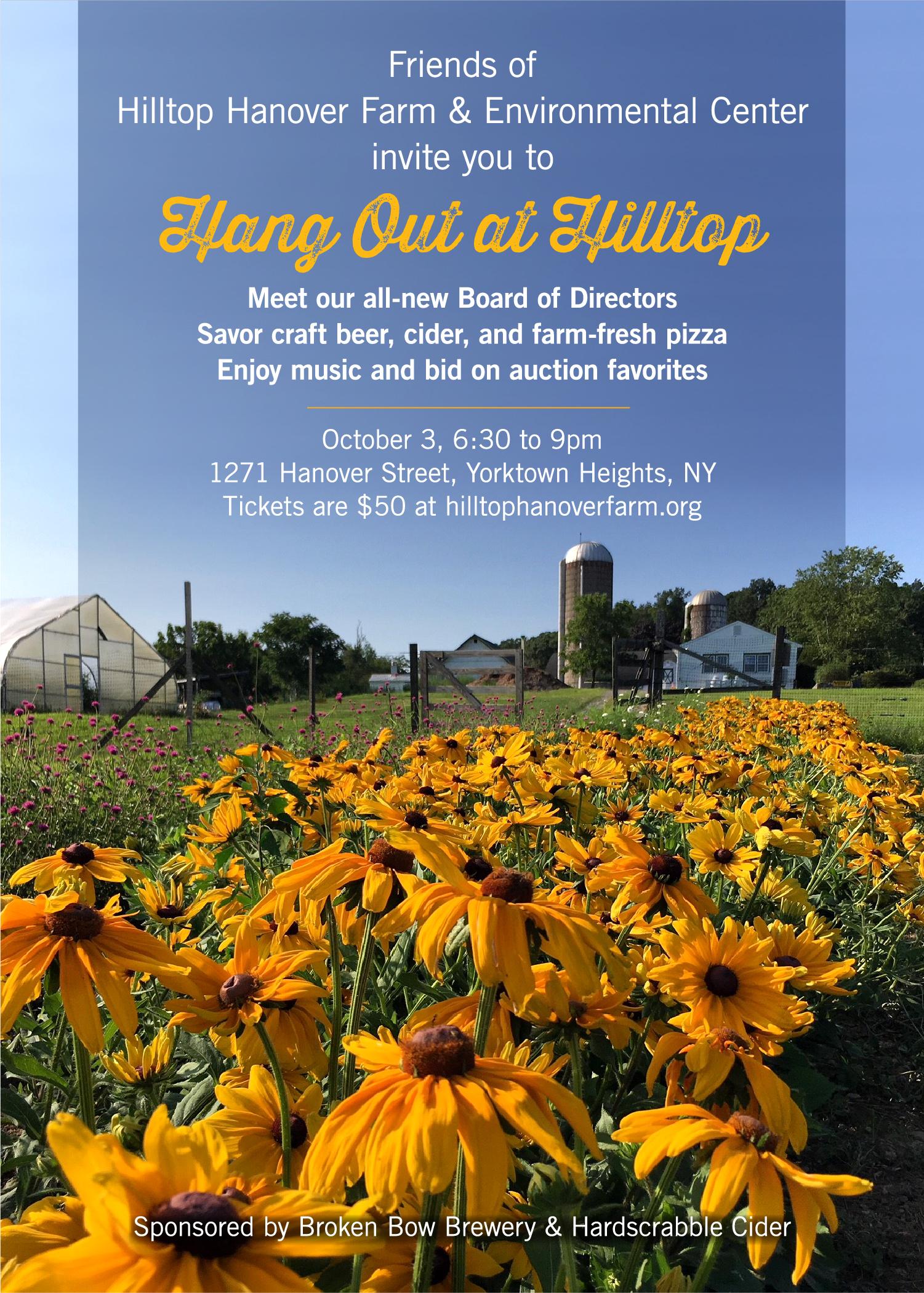 Hang Out at Hilltop