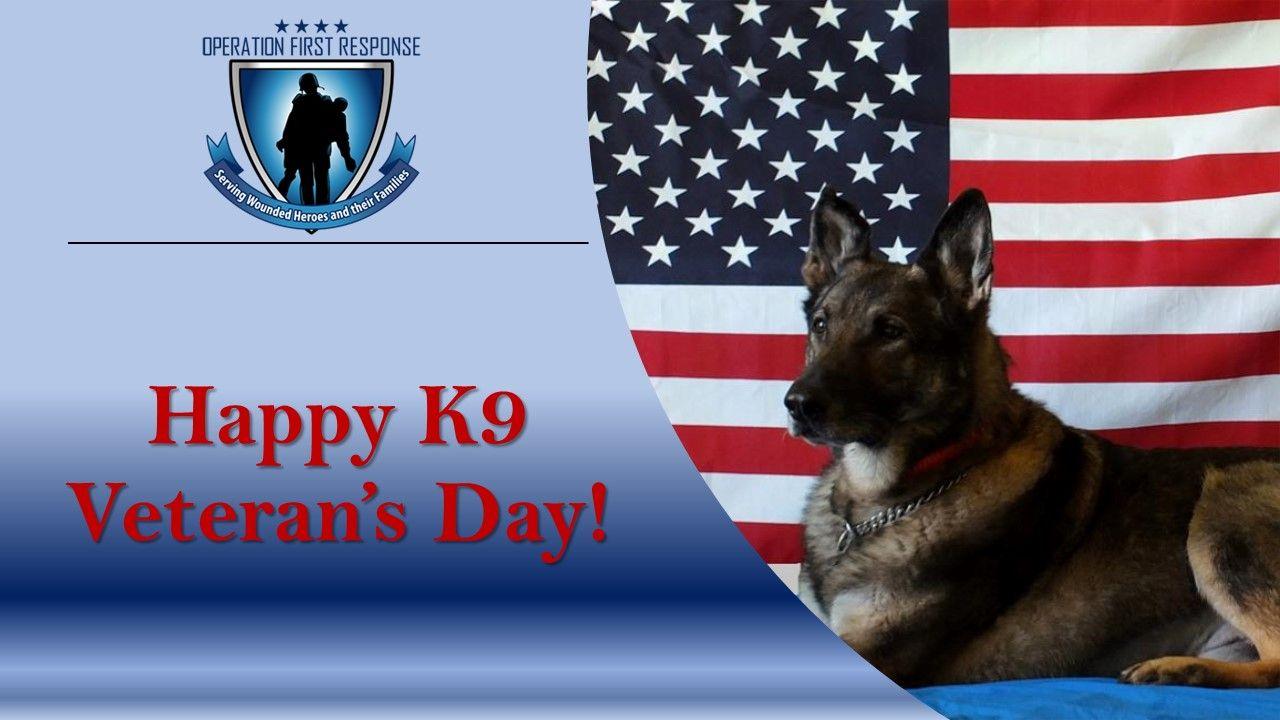K 9 Veterans Day