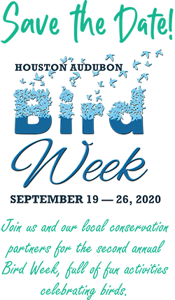 Bird Week Save the Date