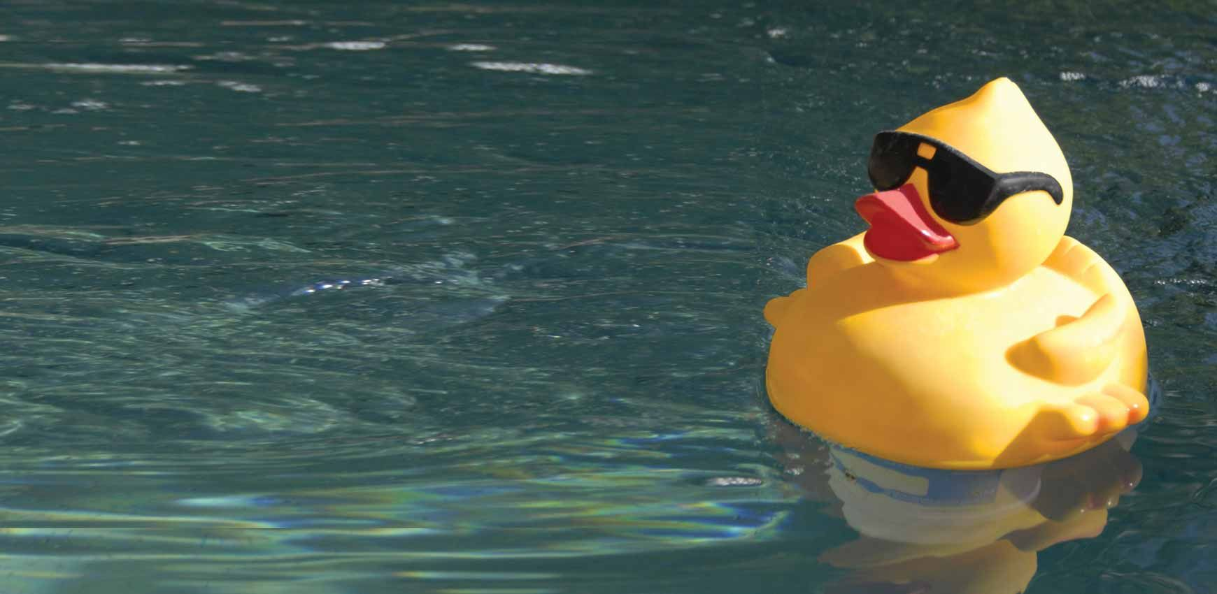 Rubber Ducky Race for Hospice