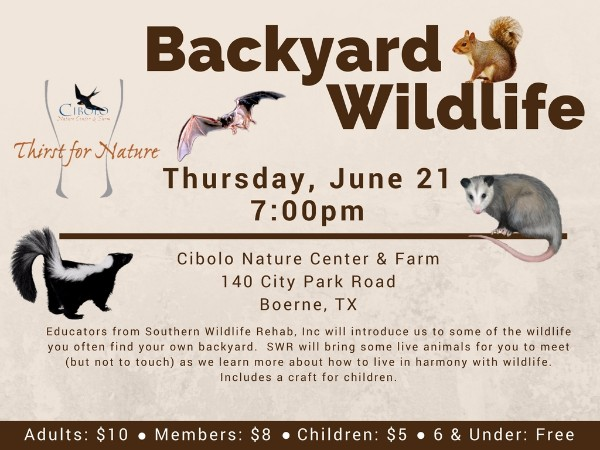 CNC: a Thirst for Nature event - Backyard Wildlife
