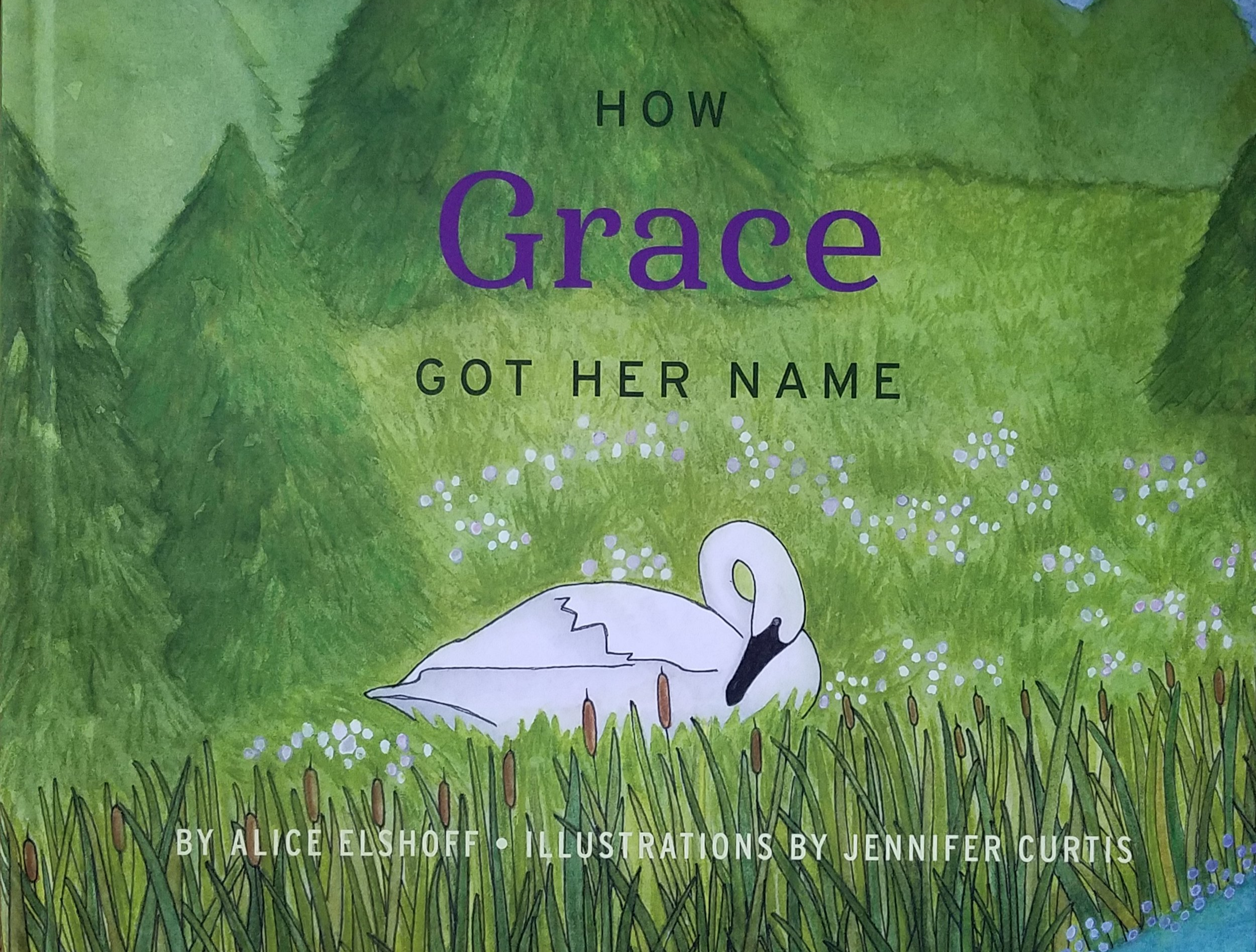 How Grace Got Her Name is an enchanting children's book sharing the real-life story of Grace, the Society's Oregon Restoration Project swan