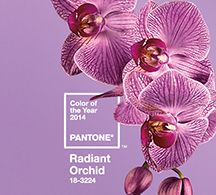 Use Pantone's Color of the Year in Your Marketing