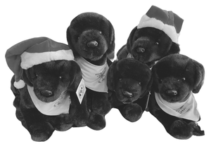 $150- Half Litter of Brave Stuffed Pups