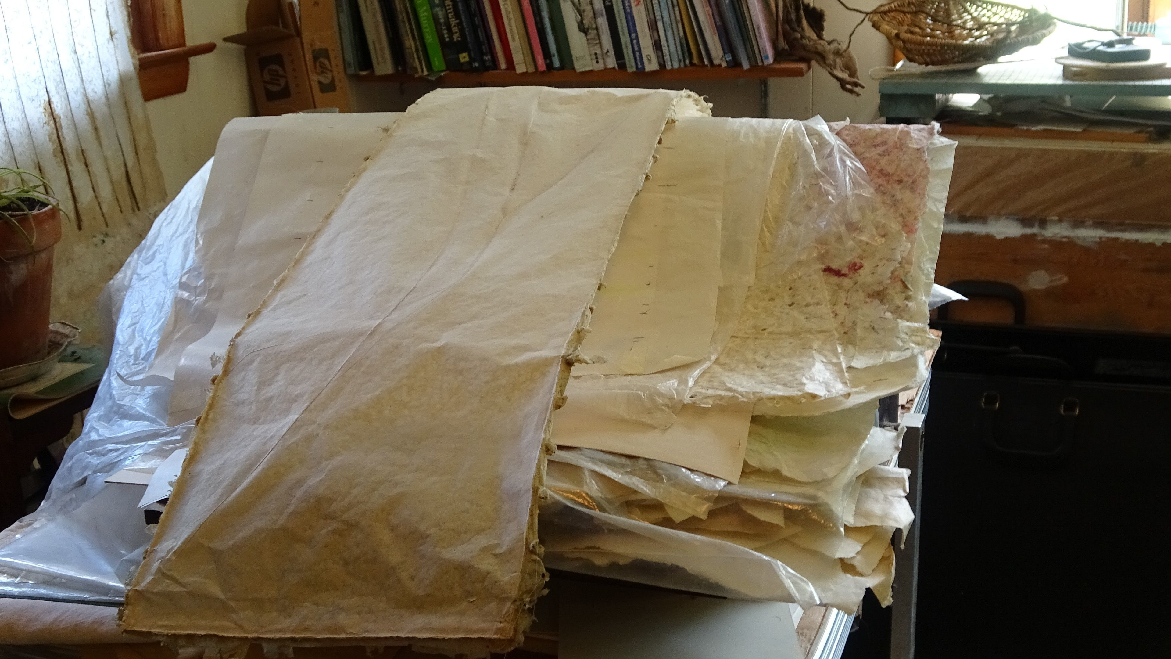 Papermaking with June Tyler