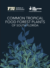 Common Tropical Food Forest Plants of South Florida