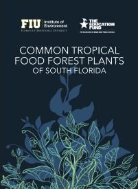 南佛罗里达常见的热带食用森林植物