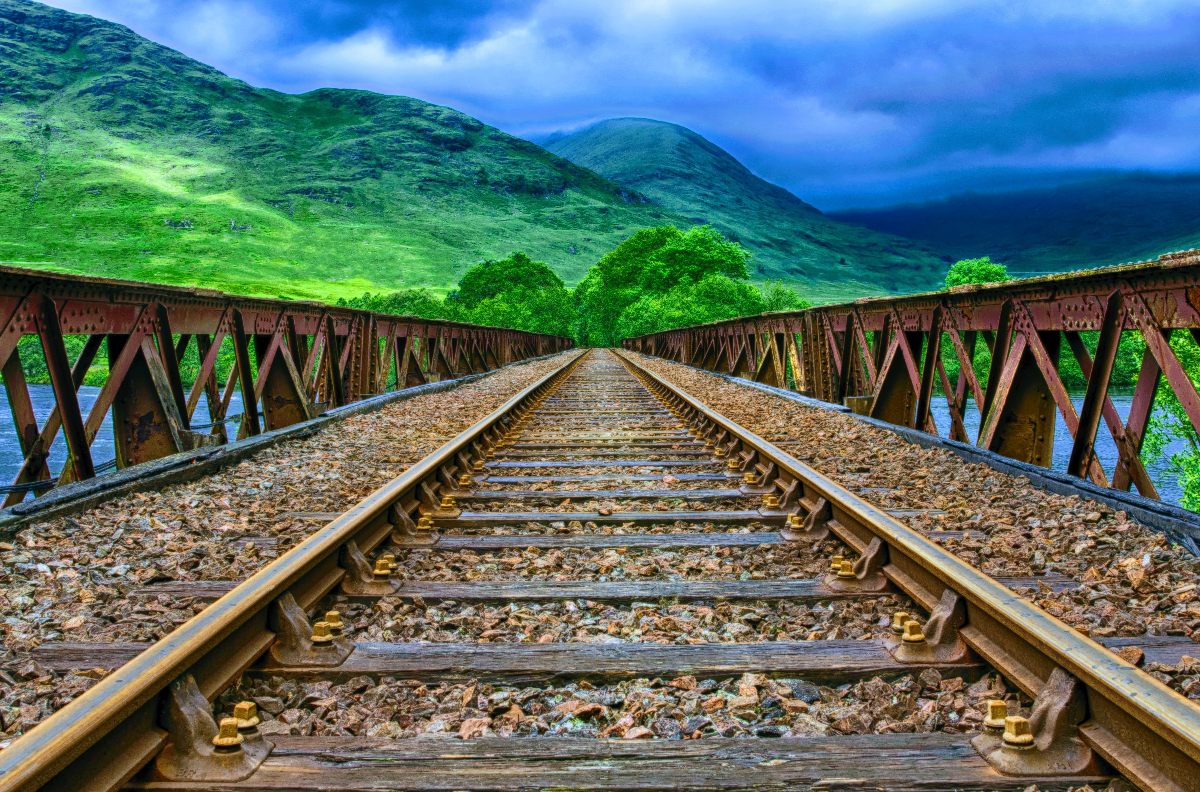 Discovering MErcy-My Journey by Fern-Train Tracks in Lush Mountain side