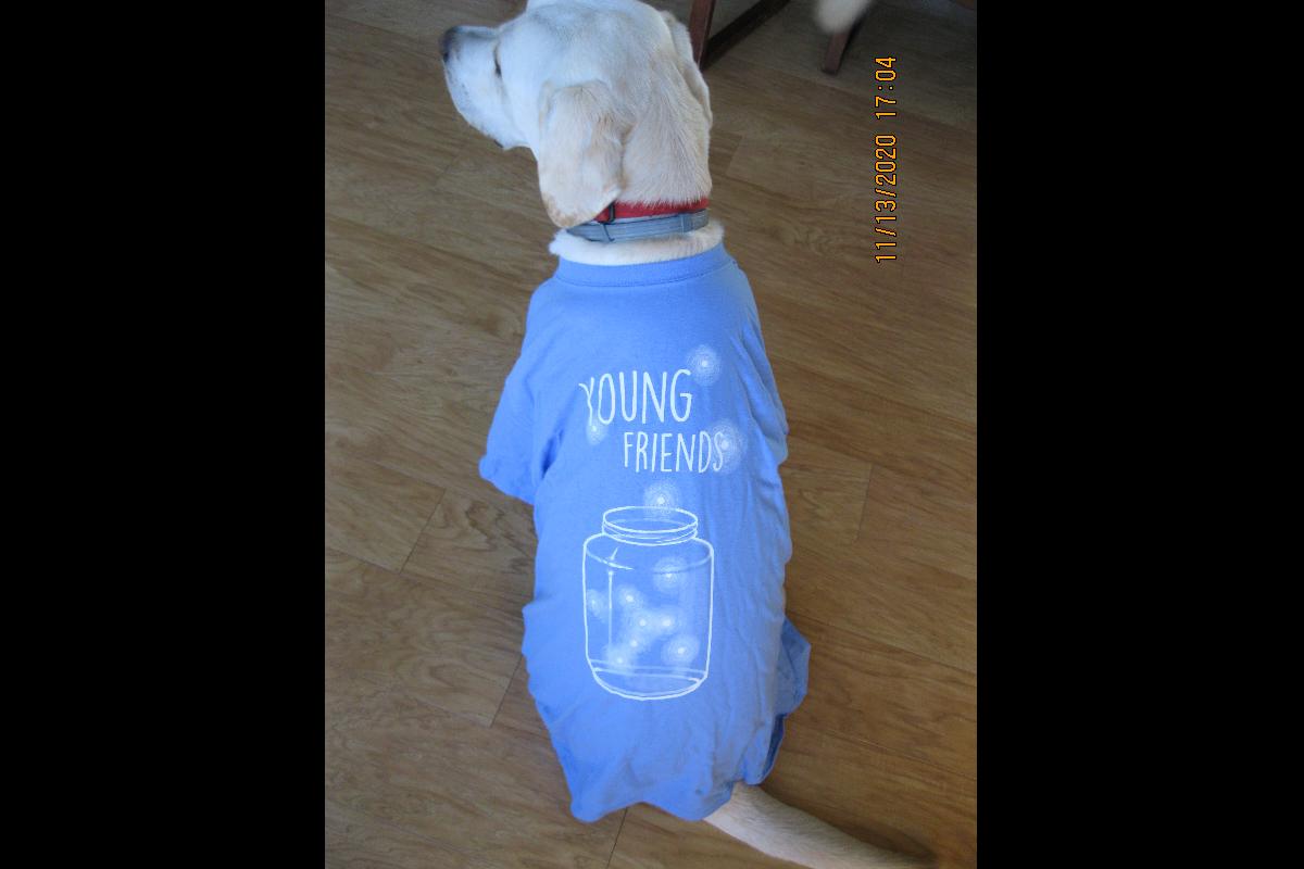 YF T-Shirt (Blue)