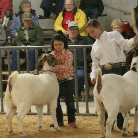 Montague County Youth Fair - January 11th - 13th